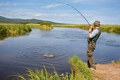 stock photo of fly rod  - Fisherman catches of salmon  - JPG
