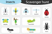 Scavenger Hunt, Insects Theme, Different Colorful Pictures For Children, Fun Education Search Game F poster