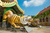 Statues Of Tigers At Buddhist Temple In Thailand poster