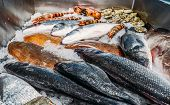 High Angle Still Life Of Variety Of Raw Fresh Fish Chilling On Bed Of Cold Ice In Seafood Market Sta poster