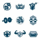 Set Of Vector Bodybuilding Theme Illustrations Made Using Dumbbells, Barbells And Disc Weights Sport poster