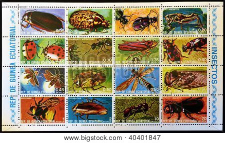 EQUATORIAL GUINEA - CIRCA 1973: Collection stamps printed in Guinea shows insects circa 1973