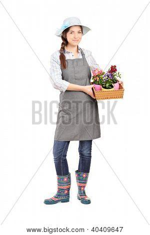 Full length portrait of a female gardener holding flower plants isolated on white background