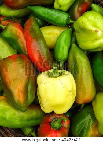 sweet bulgarian ripe peppers