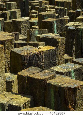 Wood Pile Vert.