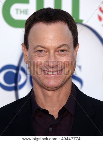 LOS ANGELES - AUG 03:  GARY SINISE Summer TCA Party 2011 - CBS / SHOWTIME / CW   on August 03, 2011 in Beverly Hills, CA