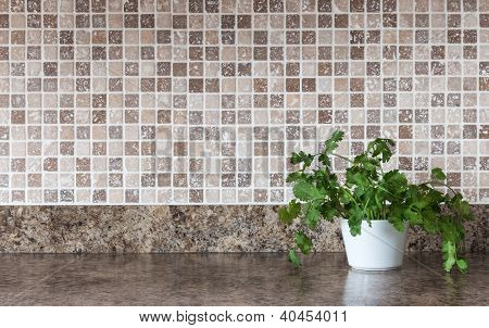 Green Herbs On Kitchen Countertop