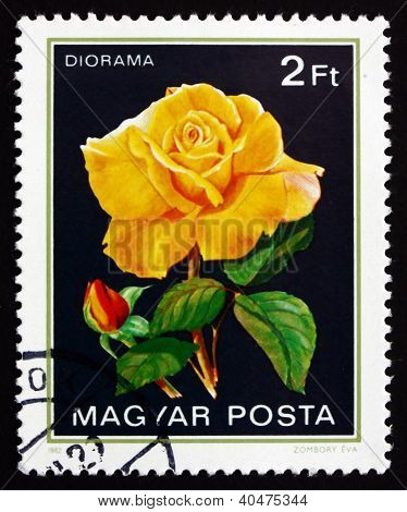 Postage stamp Hungary 1982 Diorama, Rose Flower
