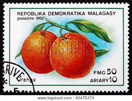 Postage stamp Malagasy 1992 Orange, Citrus Sinensis, Fruit
