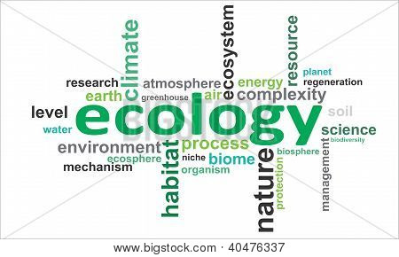 Word Cloud - Ecology.eps