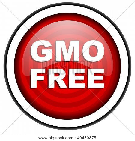 gmo free red glossy icon isolated on white background