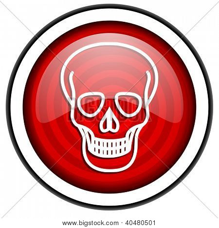 skull red glossy icon isolated on white background