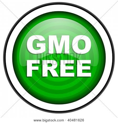 gmo free green glossy icon isolated on white background