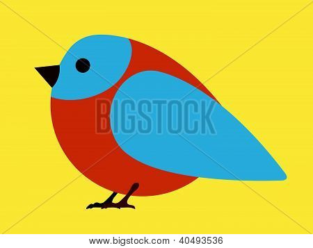 Pretty little blue bird