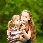 picture of 11 year old  - Cute 5 year old and 11 year old girls blowing dandelion seeds away - JPG