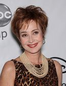 LOS ANGELES - JAN 10:  ANNIE POTTS ABC All Star Winter TCA Party 2012  on January 10, 2012 in Pasade