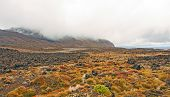stock photo of scoria  - Lava Field along the Tongariro Crossing in New Zealand - JPG