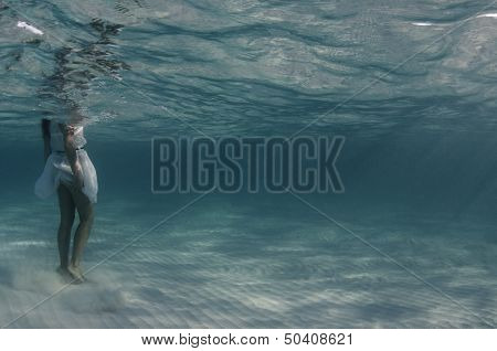 Sea Care