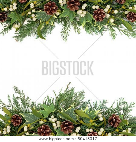 Christmas floral background border with mistletoe, ivy, pine cones and winter greenery over white.