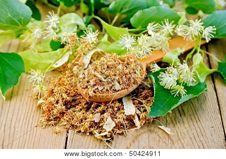 Herbal Tea From Dry Linden Flowers On A Spoon