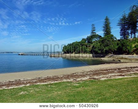 Beach With Trees With A Small Boat In The Background