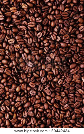 Brown coffee beans,