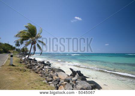 Seaside Malecon Road Sallie Peachie Beach Corn Island Nicaragua