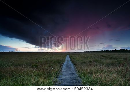 Dramatic Thunderstorm Over Path Through Swamps