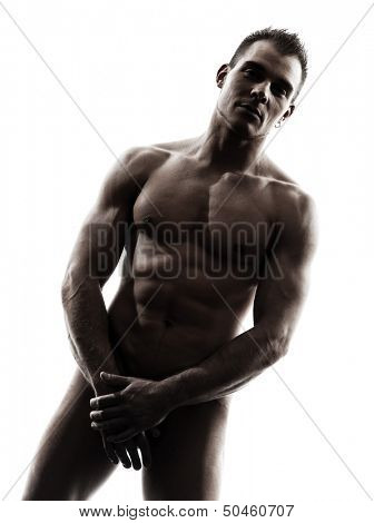 one caucasian handsome naked muscular man standing portrait  in silhouette studio on white background