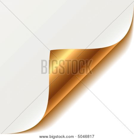 Gold Curled Corner. Vector