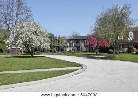 Suburban Neighborhood In Spring