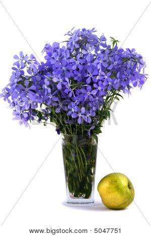 Bouquet Of Blue Flower About An Flavovirent Apple