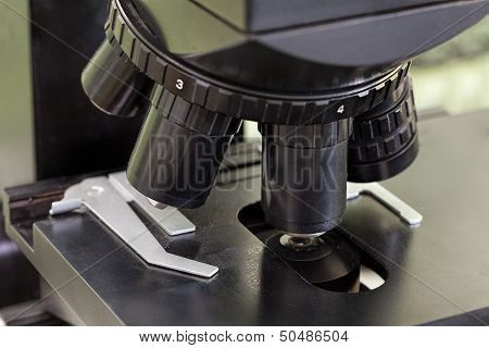 Objectives In Microscope
