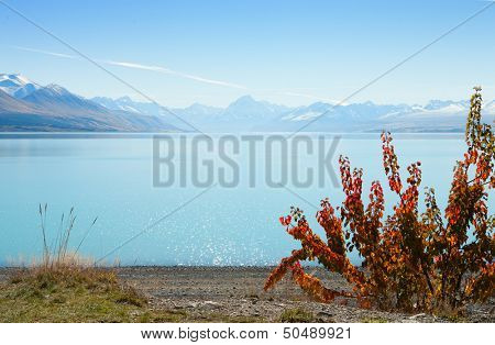 beautiful view of Lake Tekapo in autumn,  South Island,  New Zealand