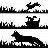 stock photo of wild-rabbit  - Vector set silhouettes of animals in the grass - JPG
