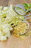 foto of meadowsweet  - Metal strainer with dried flowers of meadowsweet a bouquet of fresh flowers of meadowsweet against a wooden board - JPG