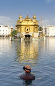 stock photo of harmandir sahib  - The most prominent Sikh Gurdwara in the world - JPG