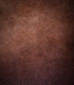 stock photo of working animal  - Brown leather texture closeup - JPG