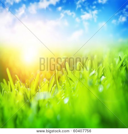 Beautiful spring landscape, fresh green grass, blue sky, bright yellow sun light, gorgeous warm weather, springtime season concept