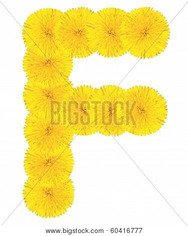 Letter F Made From Dandelions