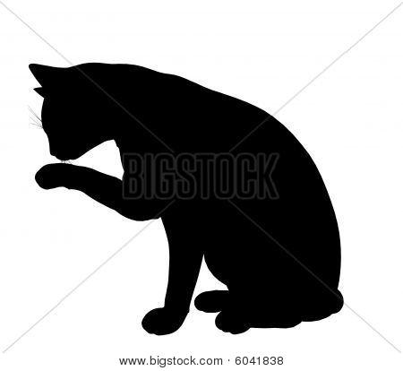 Cat Abbildung silhouette