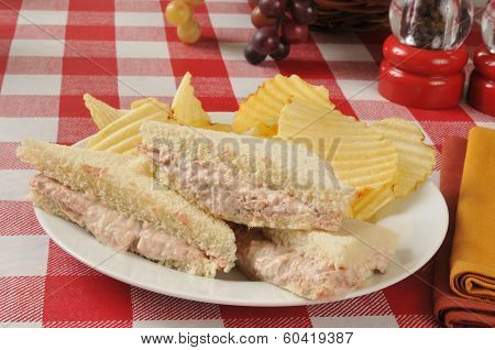 Tuna Sandwich And Chips