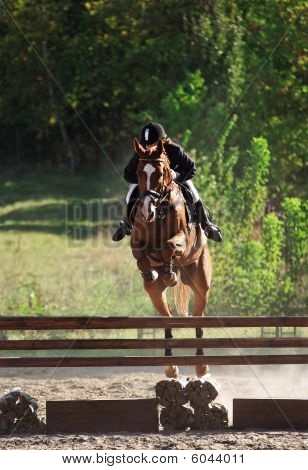 Saltos de cavalo