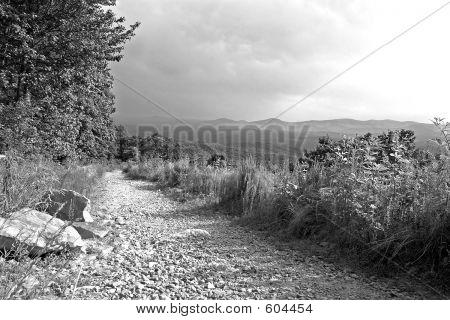 Mountain Trail In B&W
