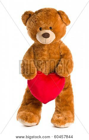 teddy bear with red heart on white background