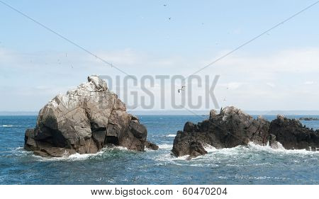 Rock Formation With Some Birds At Seven Islands