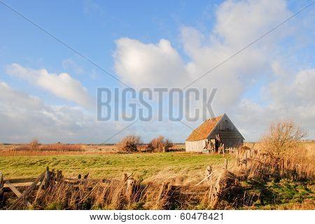 Old Shed In Texel Landscape