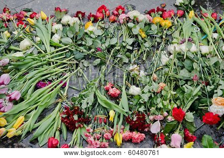 Flowers In Honor Of Those Killed In The Maidan In Kiev