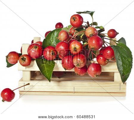Apple fruits heap in wooden box crate Isolated on a white background