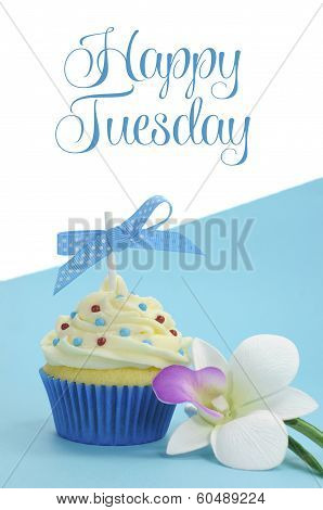 Beautiful Blue Cupcake With Orchid Flower On Blue Background, With Happy Tuesday Sample Text Or Copy